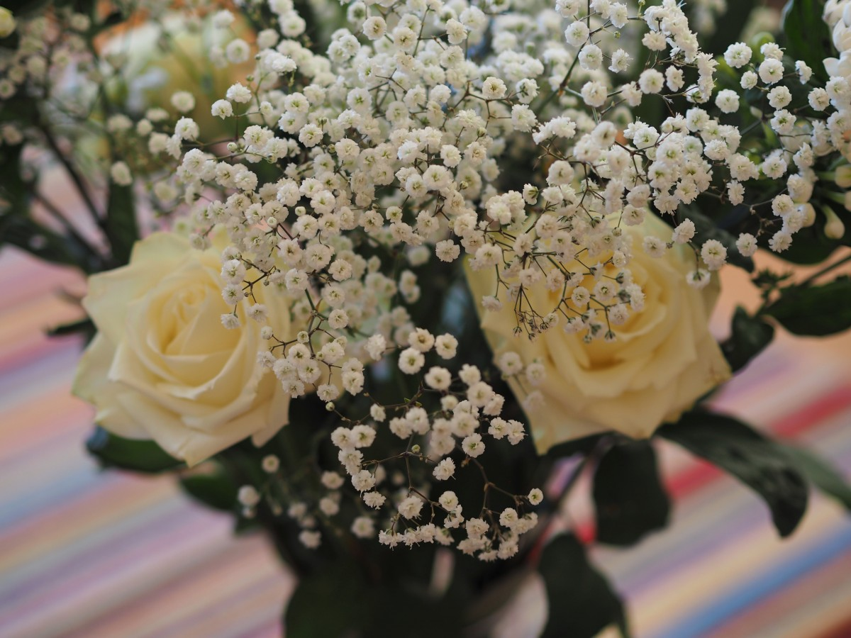 Freddie's Flowers, not just another subscription box